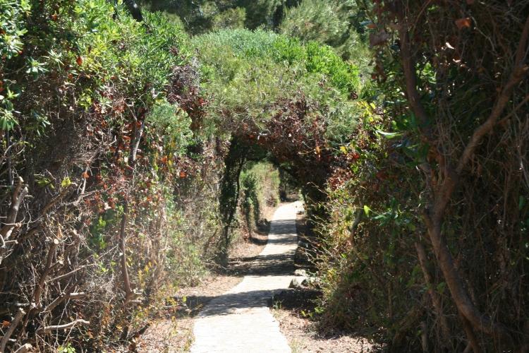 Along an intriguing path ...